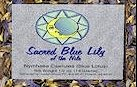 SACRED BLUE LILY SMOKING BLEND
